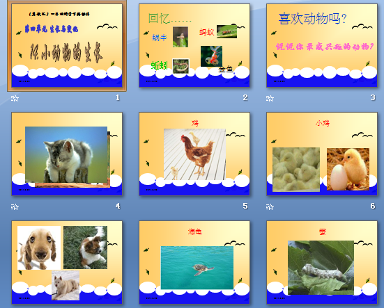 最新2015四年级科学小动物的生长课件