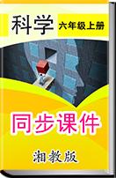小学科学湘教版六年级上册同步课件