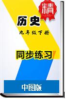 【2019新】初中历史中图版九年级下册同步练习(含答案解析)