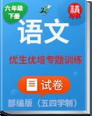 人教部编版(五四学制)语文六年级下册优生优培专题训练
