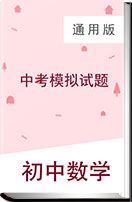 2019年北京市初中数学中考模拟试题(含答案)