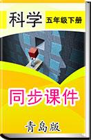 小學科學【青島版(六三學制)】五年級下冊 同步課件