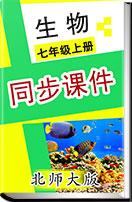 初中生物北师大版七年级上册 同步课件