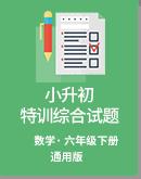 小学数学 小升初 特训综合训练试题(无答案) 通用版
