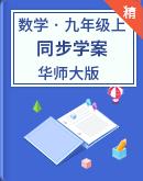 华师大版数学九年级上册(同步学案)