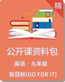 初中英语新目标(Go for it)版九年级公开课资料包