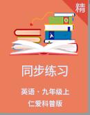 2019年仁爱科普版英语九年级上册同步练习