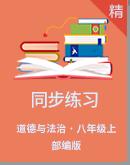 人教部编版道德与法治八年级上册同步练习(含解析)