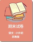 2019年江苏省各市区小升初语文期末试卷 (苏教版)
