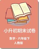 人教版2019年河北省保定市部分市縣小升初數學期末試卷(含答案)