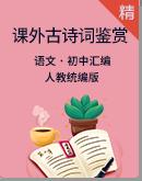 人教统编版初中语文课外古诗词鉴赏专项训练
