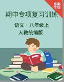 人教统编版语文八年级上册期中专项复习训练(解析版)