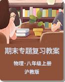沪教版(上海)物理八上期末专题复习教案(学生版+教师版)
