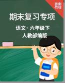 【2020统编版】六年级下册语文期末 复习专项