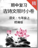 统编版语文七上期中复习古诗文限时小卷