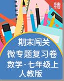 【期末闯关】人教版数学七年级上册 微专题复习试卷