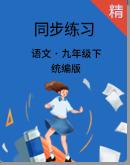 统编版语文九年级下册同步练习(解析版)