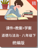 統編版道德與法治八年級下冊同步課件+教案+學案