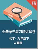 【備考2020】化學九年級全冊單元復習精講試卷