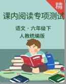 人教统编版语文六年级下册单元课内阅读与积累运用专项测试卷(含答案)