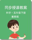 小學科學【冀教版】五年級下冊 同步授課教案