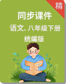 人教统编版语文八年级下册同步课件