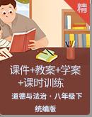 【2020春】统编版道德与法治八年级下册 课件+教案+学案+课时训练+素材