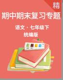 统编版语文七下期中期末复习专题 (课件+打印版+答案版)