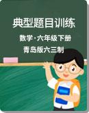 小学数学 青岛版六三制 六年级下册 典型题目训练(含答案)