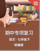 【期中备考】统编版语文七下专项复习(含解析)