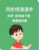 小學科學 粵教粵科版 四年級下冊(新) 同步授課課件