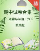 【期中復習】道德與法治六年級下冊期中試卷合集(含答案)
