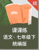 统编版语文七年级下册课时练(自主预习+随堂学练+课堂达标+课后作业)