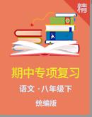 【期中备考】统编版语文八下专项复习(含解析)