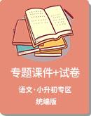 小学语文 统编版 小升初 专题课件+试卷