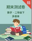 2020年数学二年级下册多版本期末测试卷