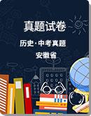 【備考2020】安徽省 近五年中考歷史 試卷(解析版)