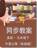 初中英语 牛津上海(本地版)五四制 九年级下册 同步教案