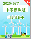 【備考2020】中考數學模擬試題(山東省各市)