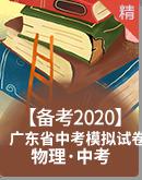 【備考2020】廣東省中考物理模擬試卷(原卷+解析卷)