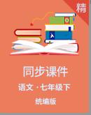 统编版语文七年级下册同步课件