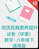【八年级数学 下册】培优竞赛素养提升 试卷(学案)通用版