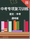 2020年中考语文专项复习训练