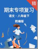 统编版语文八年级下册期末专项复习 (含解析)