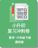 小学数学 小升初 复习冲刺卷(含答案)