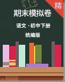 【期末复习】2020统编版初中语文下册期末模拟卷