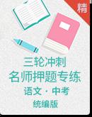 2020中考语文三轮冲刺名师押题专练 原卷板+答案版
