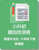 统编版 六年级下册(道德与法治)小升初 模拟检测卷