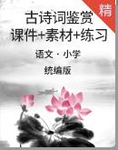 【古诗词特辑】小学语文古诗词鉴赏含常考知识点 课件+素材+练习