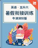 【暑假衔接】牛津深圳版小学英语五升六暑假专题训练(含解析)